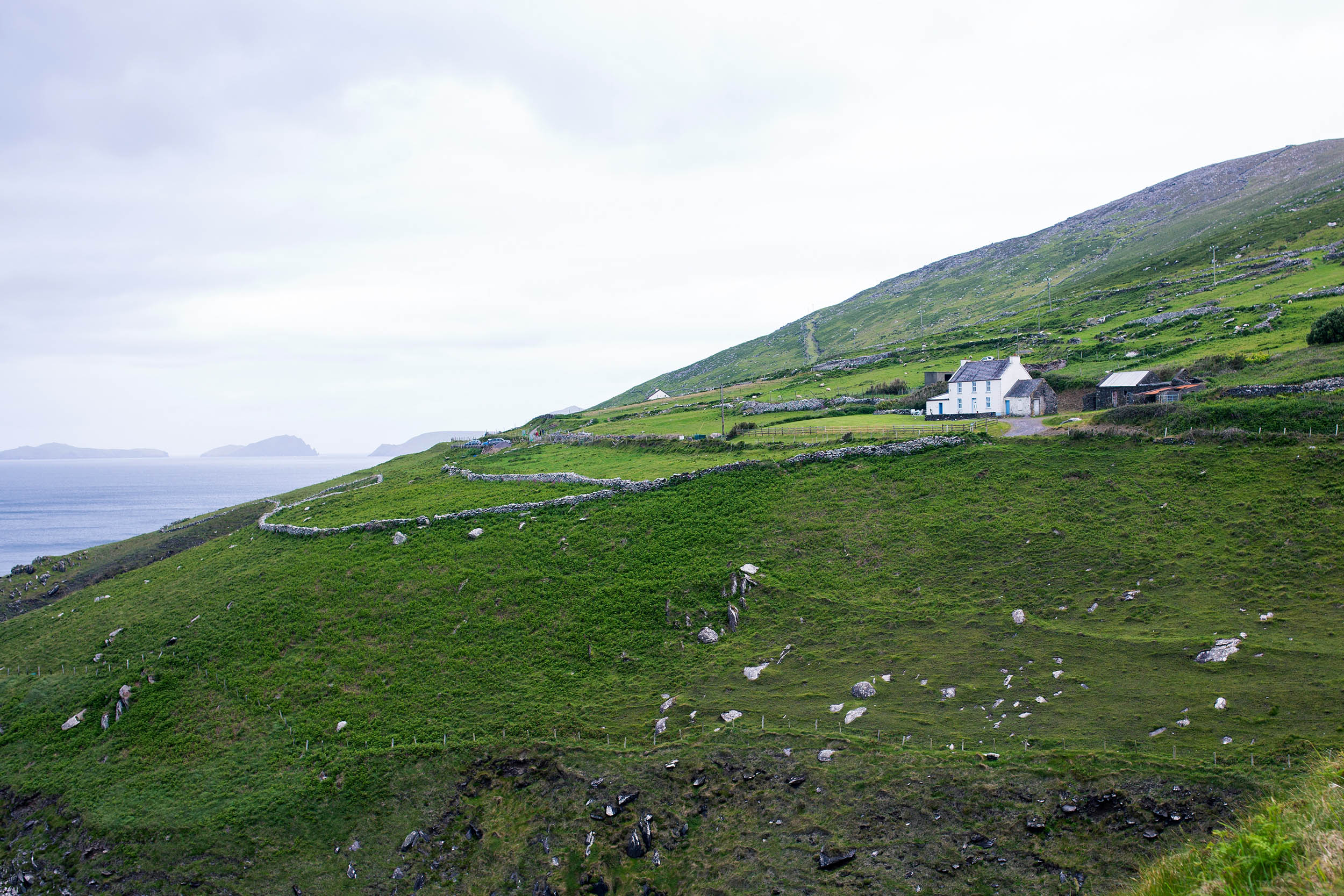IRELAND_KERRY_SLEAHEAD_0029