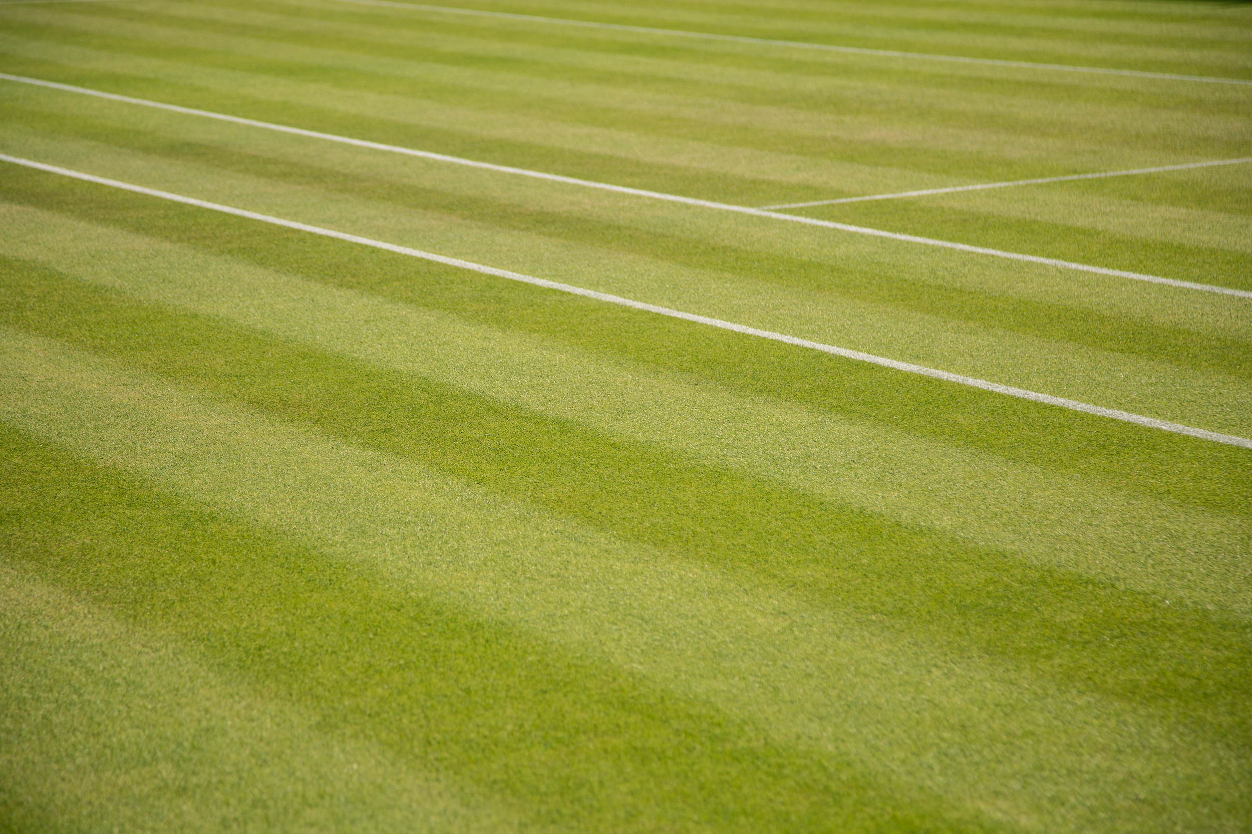 ENGLAND_LONDON_WIMBLEDON_0019